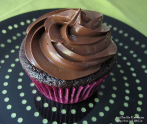 12 decadent Chocolate Cupcakes from Wendy Rodgers